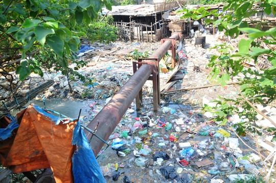 Rác thải sinh hoạt của người dân nổi trắng một phần mặt hồ Linh Quang (quận Đống Đa, TP Hà Nội) Ảnh: NGUYỄN HƯỞNG
