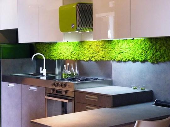 Không gian bếp ăn cũng là nơi lý tưởng để bố trí bức tường cây thẳng đứng như thế này