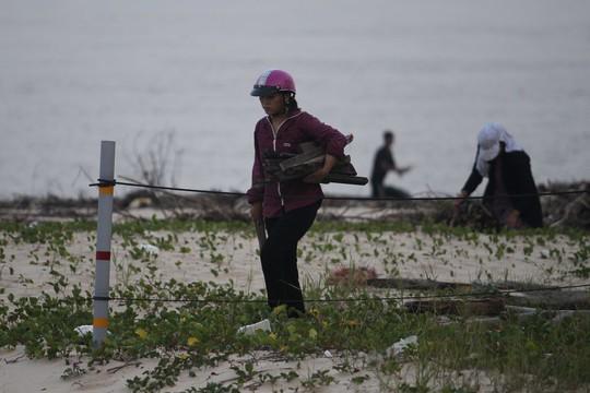 Chị Liễu sống gần đấy cho biết: lũ về theo sông Nhật Lệ cuốn theo nhiều vật dụng cây cối ra bờ biển, đến chiều tôi ra đây để nhặt một số cây còn sử dụng được về nhà làm củi đốt
