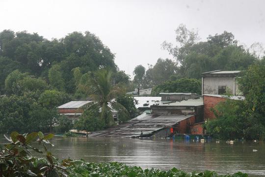 Nhiều ngôi nhà ven sông Tam Kỳ ngập đến nóc