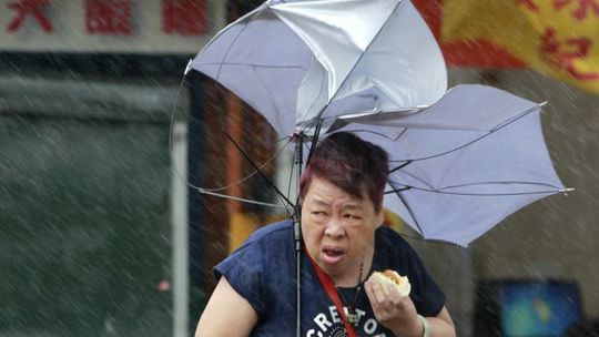 Trước đó, một người phụ nữ Đài Loan cũng trở nên nổi tiếng vì thưởng thức bánh bao bất chấp mưa bão. Ảnh: AP