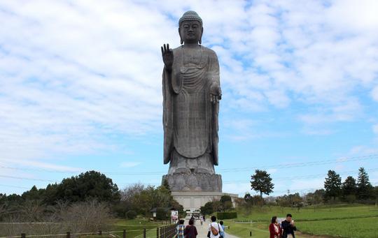 Đại tượng Phật chia thành 3 phần: phần đế cao 10 m, phần đài sen cao 10 m và chiều cao của tượng Phật là 100 m.