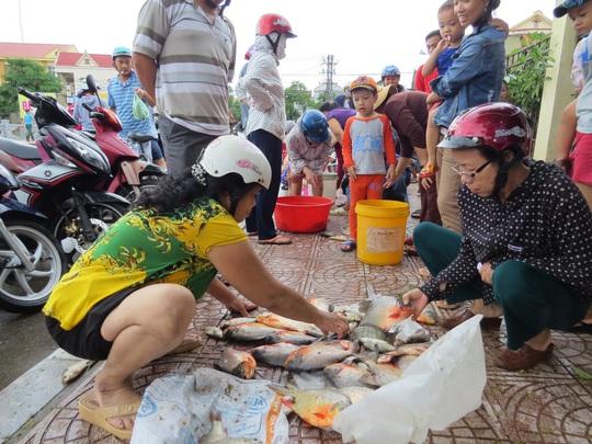 Chợ cá trên hè phố