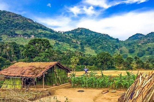 Phong cảnh đẹp như tranh tại ngôi làng Lambasingi. Ảnh: Twitter