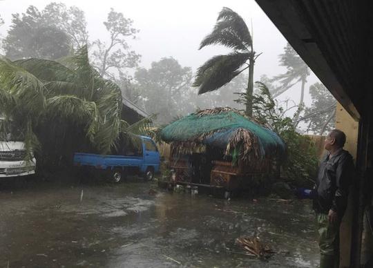 Bão Haima gây mưa to gió lớn khiến nhiều cây ngã đổ. Ảnh: PA