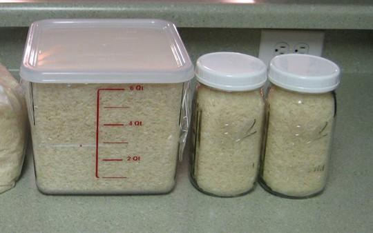 Không nên dùng thùng nhựa đựng gạo