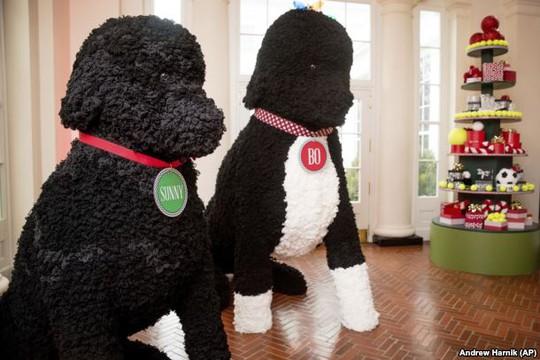 Hai mô hình chú chó cưng Sunny và Bo của gia đình ông Obama. Ảnh: AP