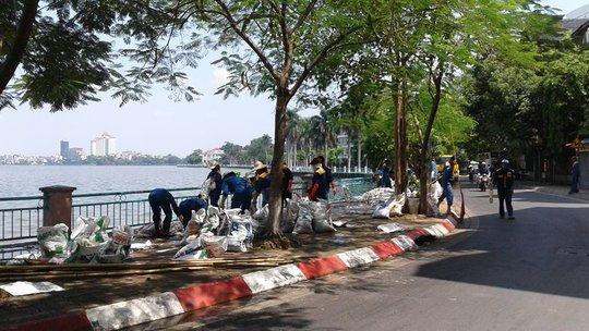 Cá chết chất thành đống trên đường Nguyễn Đình Thi được thu gom đi tiêu huỷ