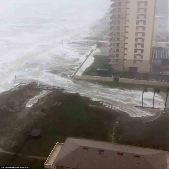 Nước biển tràn vào Jacksonville, bang Florida - Mỹ hôm 7-10Ảnh: Facebook