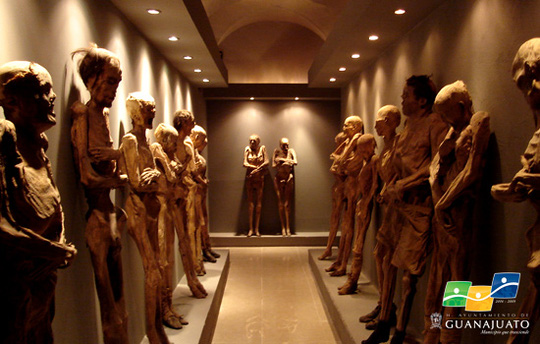 Những xác người trong bảo tàng El Museo de las Momias. Ảnh: Guanajuato