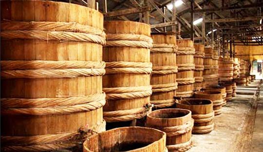 Một cơ sở sản xuất nước mắm truyền thống