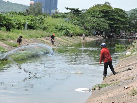 Người dân giăng lưới bắt cá