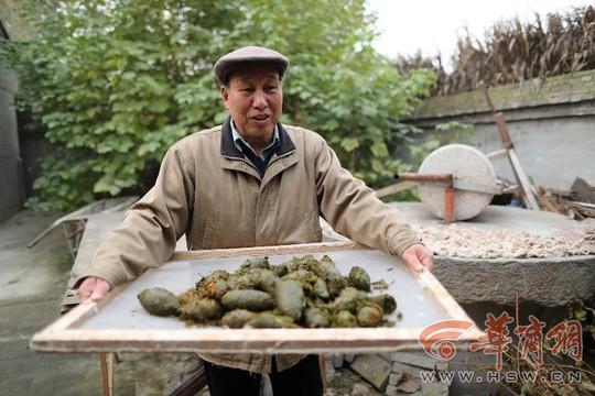 Nguyên liệu làm giấy độc đáo của ông Liu: phân gấu trúc. Ảnh: HSW.cn