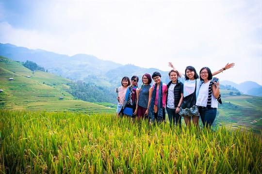 Cả nhóm chụp ảnh bên ruộng lúa chín vàng
