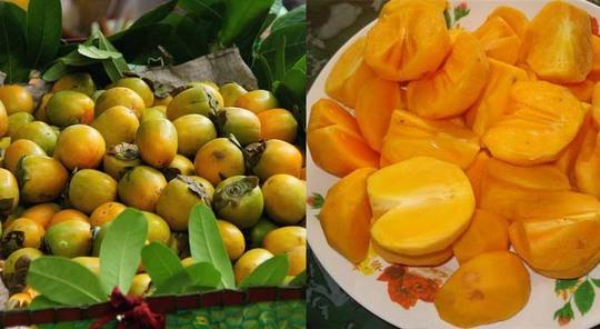 Ăn nhiều trái cây có chất tanin có thể gây tắc ruột