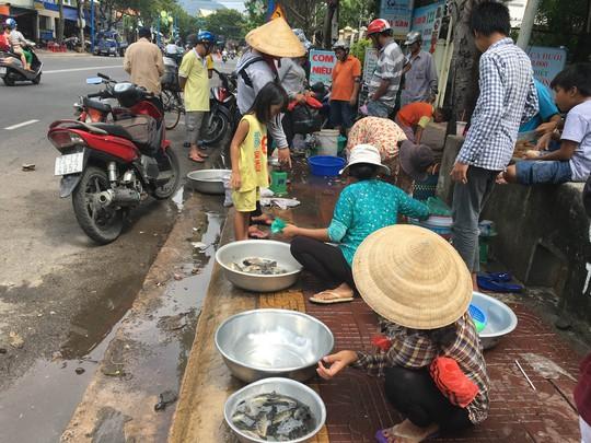 Nhiều người tranh thủ bán ngay tại kênh với giá 10.000 đồng/kg cá nhỏ, 30.000 đồng/kg cá lớn