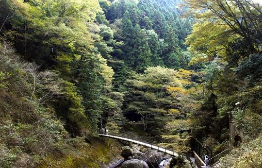 Khung cảnh nên thơ tại thác Fukuroda