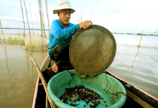 Dân nghèo ở xã Thường Thới Hậu A, huyện Hồng Ngự, tỉnh Đồng Tháp tỏ ra kém vui vì lũ đã về nhiều nhưng nguồn lợi thủy sản thì không có gì đáng kể.