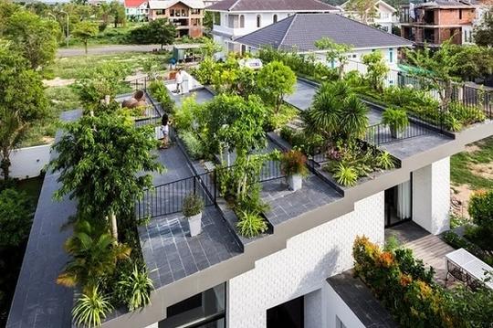 Do kết cấu đặc biệt này, phía trước là nhà một tầng, phía sau là nhà 2 tầng nhưng có sự chuyển tiếp linh hoạt. Chủ nhà có thể ngắm cảnh và thư giãn giữa không gian xanh mướt.