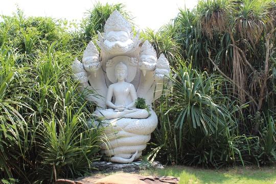 Tượng Đức Phật được bảo vệ bởi thần Naga bảy đầu