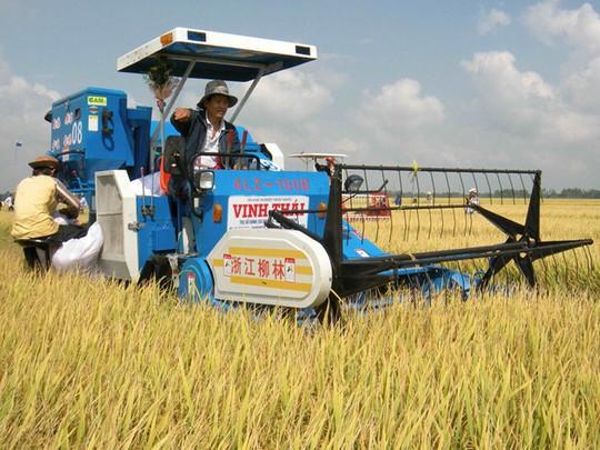 VN cần thay đổi mục tiêu trong sản xuất lúa gạo ẢNH: CHÍ NHÂN