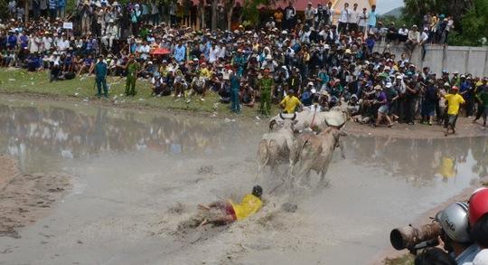 Cũng có người chỉ biết nắm chặt dây để đôi bò kéo về đích.