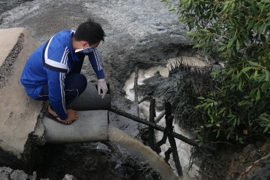 Nước thải của công ty chưa qua xử lý đổ ra môi trường