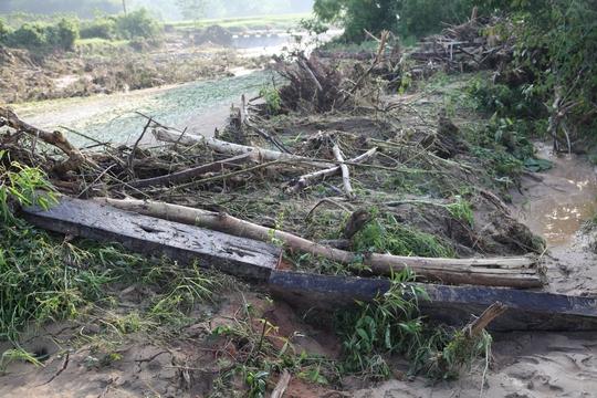 Lũ đi qua, hàng loạt cây lớn bị bật gốc nằm ngổn ngang