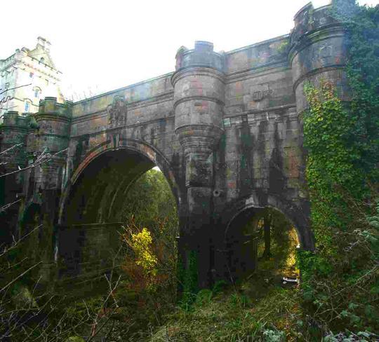 Cây cầu ma quái Overtoun ở Scotland. Ảnh: Animal Behavioural Clinic, Mirror