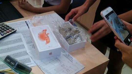Ảnh chiếc iPhone 6s chứa toàn đá tại chi nhánh TGDĐ, thành phố Yên Bái.