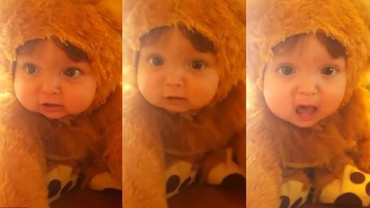 Chú sư tử tí hon đáng yêu nhất thế giới trở thành tâm điểm chú ý trên mạng. Ảnh cắt từ clip.