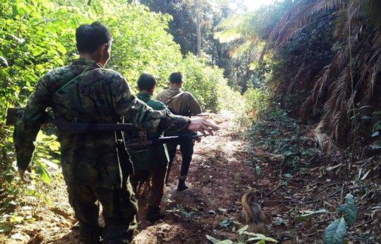 Nhóm lên đường vào rừng đi săn.