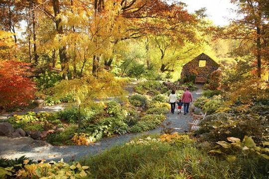 Ngẩn ngơ cảnh đẹp mùa thu nước Mỹ