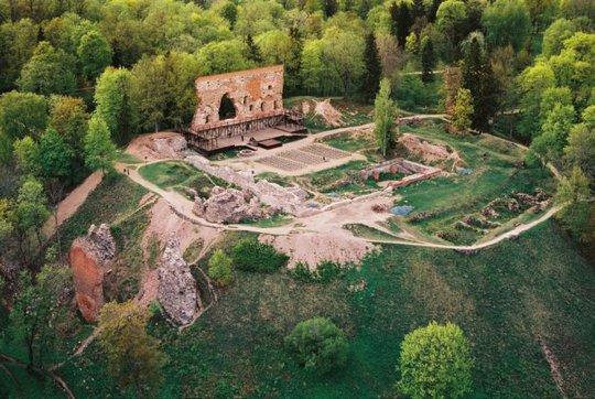 Mảng tường phế tích của lâu đài Fellin giữa thảm thực vật - Ảnh: hanse.org