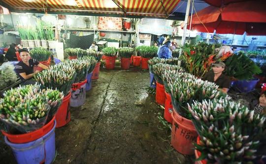 Hoa ở chợ Quảng Bá được đánh giá là đẹp và tươi nhất, chuyển về từ khắp các vùng lân cận như Tây Tựu, Đông Anh, Gia Lâm, Phúc Yên.      Cũng có nhiều loại hoa được chuyển từ Đà Lạt, Sapa về bán tại chợ. Chợ đông và tấp nập nhất lúc 3-4h sáng hằng ngày.      Nhiều loài hoa lan được đóng vào hộp bảo quản trong thùng lạnh từ nước ngoài về cũng có mặt.      Phải có mặt từ tờ mờ sáng thì mới thấy được sự hấp dẫn của chợ hoa Quảng Bá. Hoa ở đây bạt ngàn, đủ các loại như hoa hồng, cúc, thược dược… tươi thắm đủ sắc màu.      Một bó hoa lys tại chợ có giá từ 70.000 đến 200.000 đồng, hoa layơn cũng chỉ từ 40.000 đồng/chục bông.      Người mua hoa thường xuyên là những chủ cửa hàng hoa lớn nhỏ khắp thủ đô, thỉnh thoảng ngày rằm mùng 1 hay ngày lễ 8/3, 20/10 luôn có lượng khách đột xuất đến chợ để ngắm, để kinh doanh thời vụ.      Ngày thường, chợ chỉ họp vào ban đêm. Nhưng những ngày cuối năm, chợ hoạt động cả đêm lẫn ngày bởi lượng người đổ về mua sắm rất đông, đặc biệt là vào ngày 29 và 30 tháng Chạp.      Tiểu thương nhỏ luôn có mặt tại chợ từ rất sớm, nhanh chóng chọn hoa để mang đi tiêu thụ ở các chợ cóc, chợ tạm hay vào các shop hoa lớn.      Những gánh hàng hoa, chiếc xe đạp chọn thời điểm tờ mờ sáng để chất đầy những bó hoa màu sắc để trôi len lỏi trên phố phường Thủ đô.