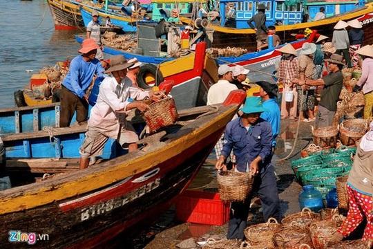 """Theo """"Địa chí Bình Thuận"""" từ năm 1809 đến năm 1930, nghề sản xuất nước mắm Phan Thiết đã trở thành một ngành công nghiệp độc đáo so với cả nước, là ngành công nghiệp duy nhất trong nền kinh tế địa phương. Năm 1904, Công sứ Pháp ở Bình Thuận đã đánh giá, Phan Thiết là một trung tâm quan trọng nhất của Trung Kỳ về khuếch trương thương mại và công nghiệp chế biến nước mắm."""