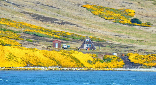 Vẻ đẹp ngoạn mục của thiên nhiên Nam Cực