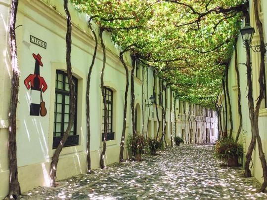 10 con đường lãng mạn bậc nhất hành tinh