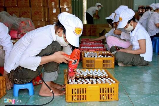 Thực hiện đúng quy định của pháp luật về bảo hộ quyền sở hữu công nghiệp, sản phẩm đáp ứng các điều kiện quy định về nguồn gốc xuất xứ và chất lượng; bảo đảm an toàn vệ sinh thực phẩm mới được gắn tem, nhãn chỉ dẫn địa lý.
