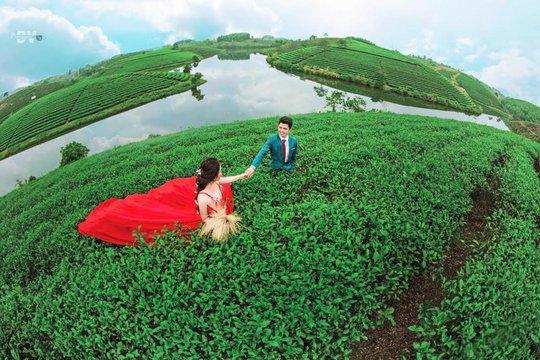 Đảo chè chính là địa điểm thú vị để đôi lứa có những khoảnh khắc ngọt ngào, lãng mạn (Ảnh: I.T).