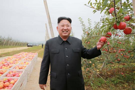 Ông Kim Jong-un tại một nông trường trái cây. Ảnh: REUTERS