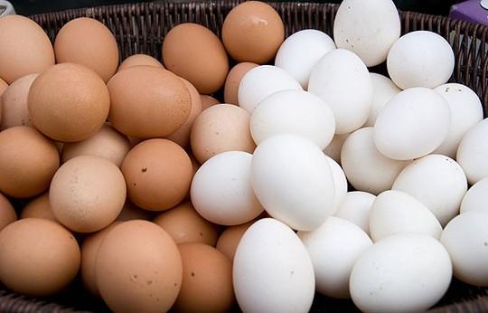 Trứng gà nâu thường có giá đắt hơn so với trứng gà trắng. Ảnh: Livestrong.