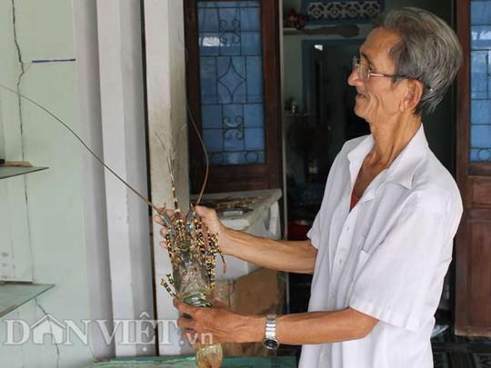 Ông Nguyễn Văn Tám có thâm niên mua vỏ tôm hùm gần 20 năm.