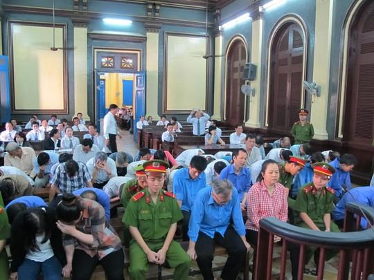 Đoàn Luật sư TP HCM kiến nghị vụ luật sư phải tố thân chủ - Ảnh 1.