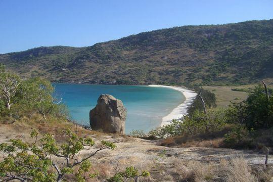 Bãi biển trên đảo Lizard. Ảnh: FLICKR