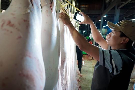 TP HCM: Thịt heo không rõ nguồn gốc đầy chợ đầu mối! - Ảnh 8.