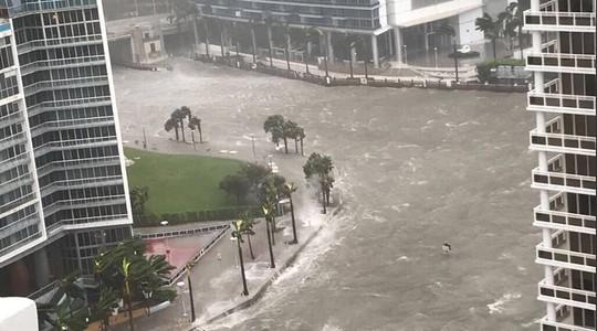 Nhiều khu vực ở bang Florida ngập trong nước. Ảnh: TWITTER