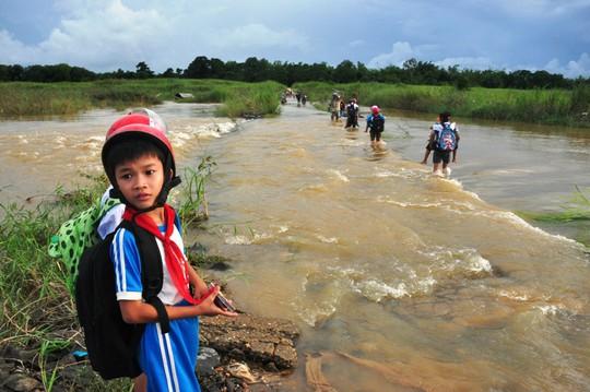 Từ Bình Định đến Đà Nẵng: Cây ngã la liệt, nhiều khu vực bị lũ chia cắt - Ảnh 8.