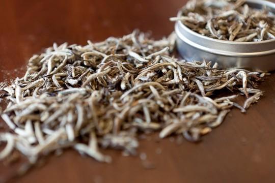 Bạch trà đắt nhất thế giới có gì đặc biệt? - Ảnh 1.