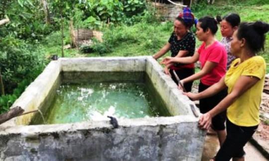 Chết lặng thấy 2 con nhỏ chết đuối trong bể nước gia đình - Ảnh 1.